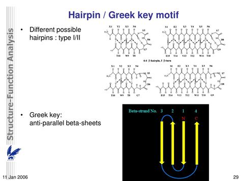 PPT - DNA/Protein structure-function analysis and
