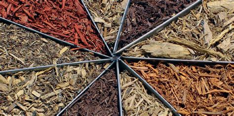 Which Mulch to Use? You Decide – Here are some facts